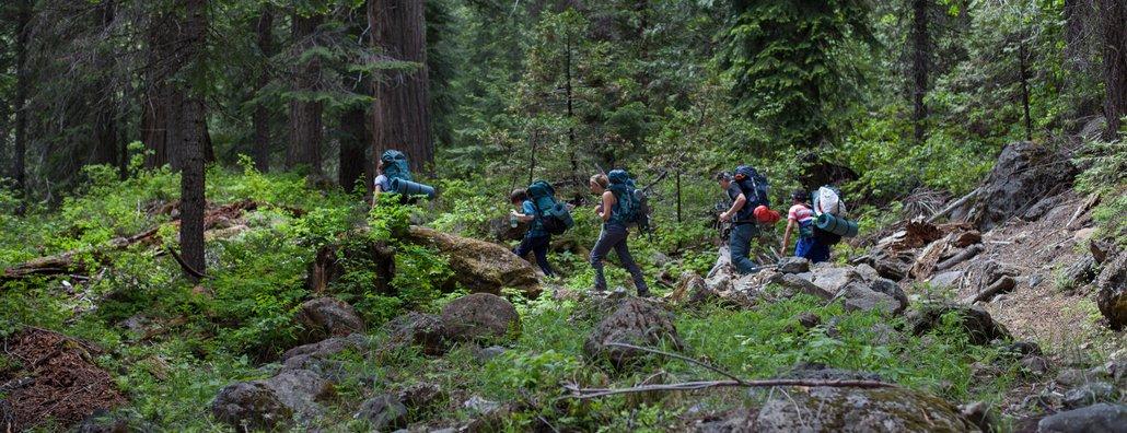 Wilderness Ascent 18 - Forest
