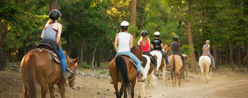 Ranch 16 - Horse trail