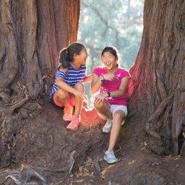 Redwood Camp Week 7 Primary / Junior