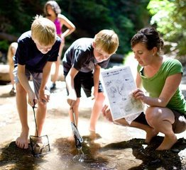 Homeschool Outdoor Science